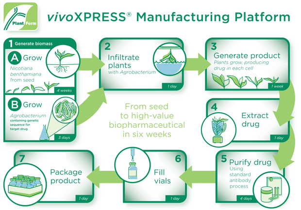 PlantForm Manufacturing Process Diagram